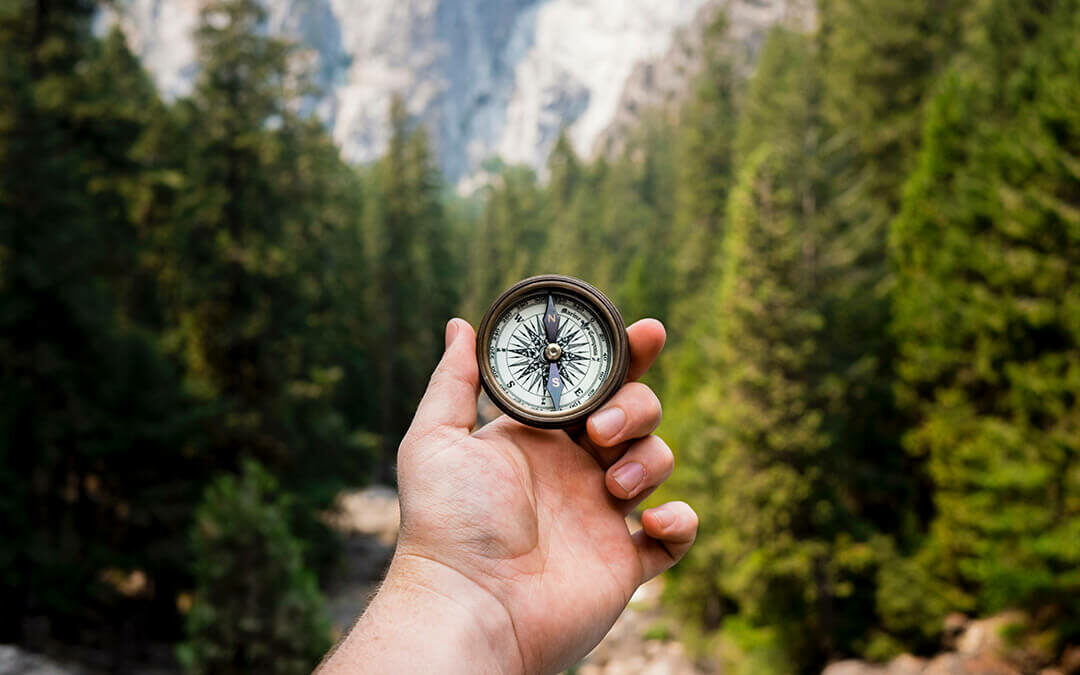 Person holding compass in woods
